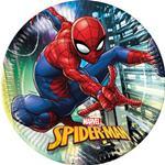 Tanierik veľký EKO Spiderman Super Hero
